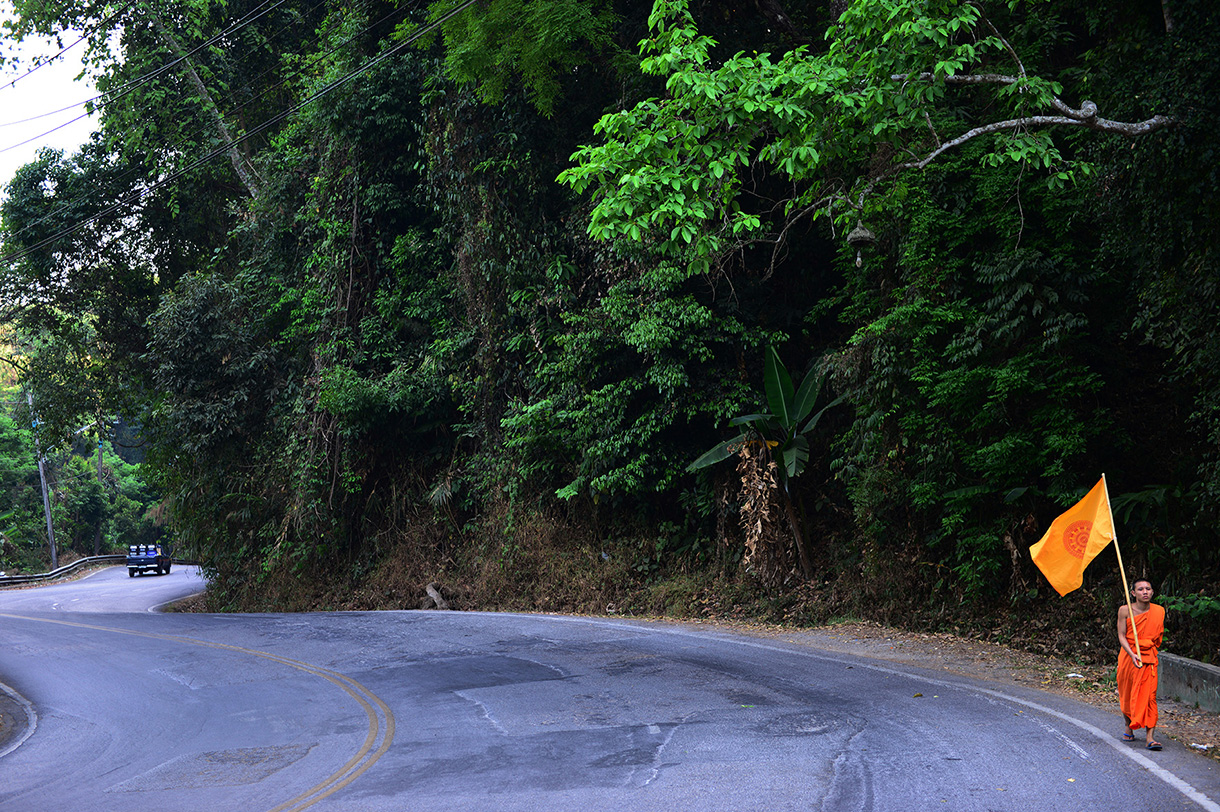 northsanct16